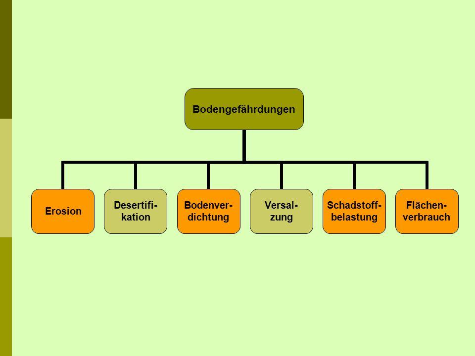 Bodengefährdungen Erosion Desertifi- kation Bodenver- dichtung Versal- zung Schadstoff- belastung Flächen- verbrauch