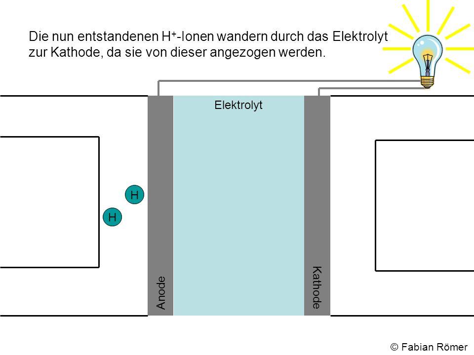 Die nun entstandenen H + -Ionen wandern durch das Elektrolyt zur Kathode, da sie von dieser angezogen werden. Elektrolyt Anode Kathode H H © Fabian Rö