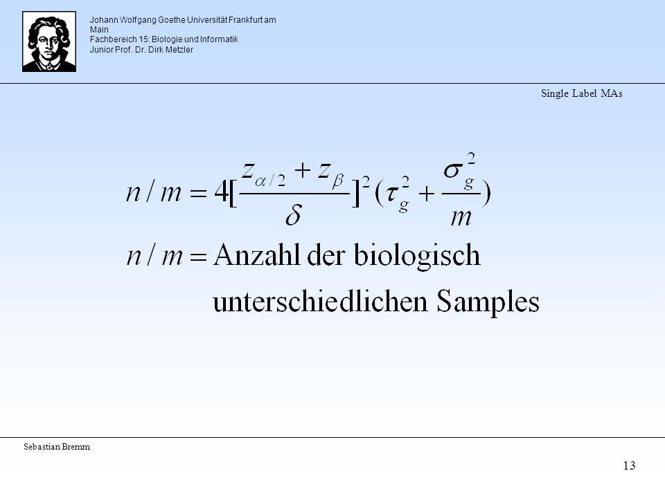Johann Wolfgang Goethe Universität Frankfurt am Main Fachbereich 15: Biologie und Informatik Junior Prof. Dr. Dirk Metzler Sebastian Bremm 13 Single L