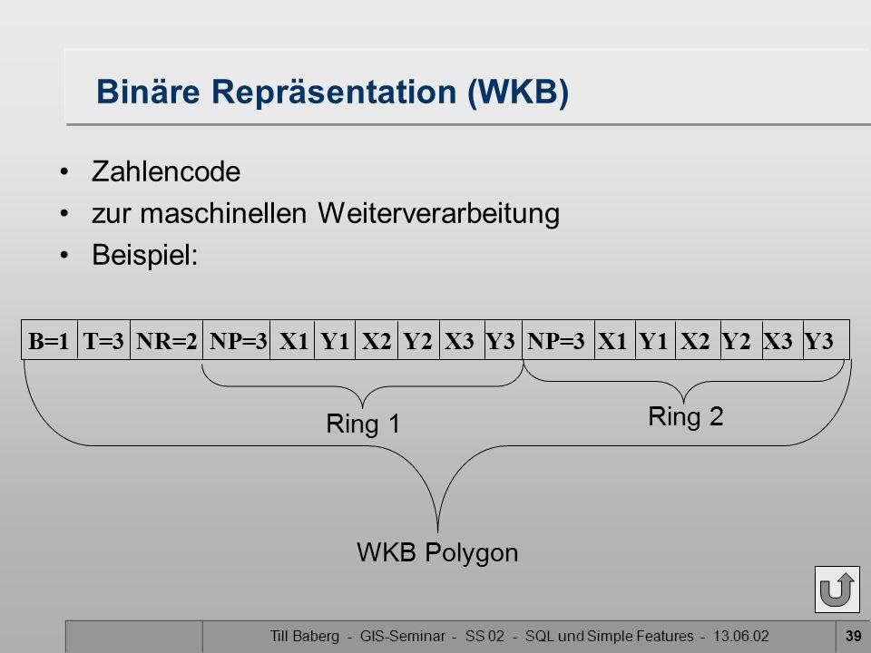Till Baberg - GIS-Seminar - SS 02 - SQL und Simple Features - 13.06.0239 Binäre Repräsentation (WKB) Zahlencode zur maschinellen Weiterverarbeitung Be