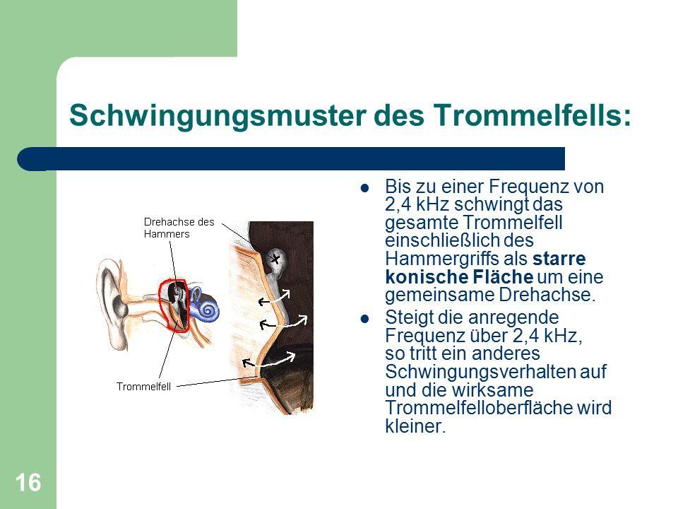 16 Schwingungsmuster des Trommelfells: Bis zu einer Frequenz von 2,4 kHz schwingt das gesamte Trommelfell einschließlich des Hammergriffs als starre k