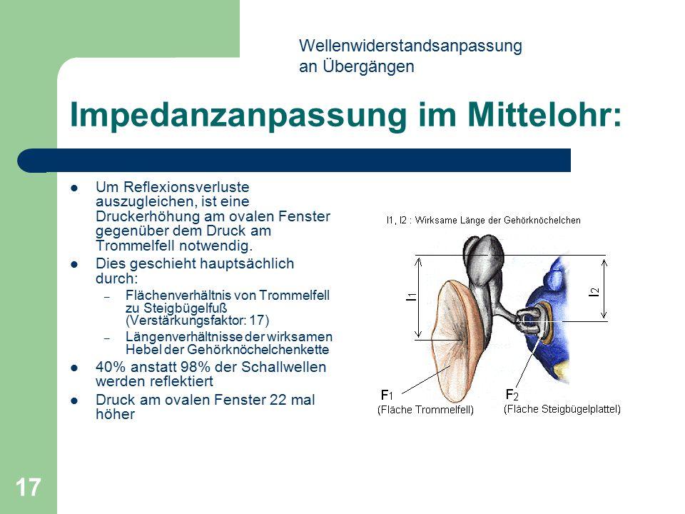 17 Impedanzanpassung im Mittelohr: Um Reflexionsverluste auszugleichen, ist eine Druckerhöhung am ovalen Fenster gegenüber dem Druck am Trommelfell no