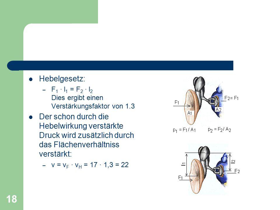 18 Hebelgesetz: – F 1 · l 1 = F 2 · l 2 Dies ergibt einen Verstärkungsfaktor von 1.3 Der schon durch die Hebelwirkung verstärkte Druck wird zusätzlich