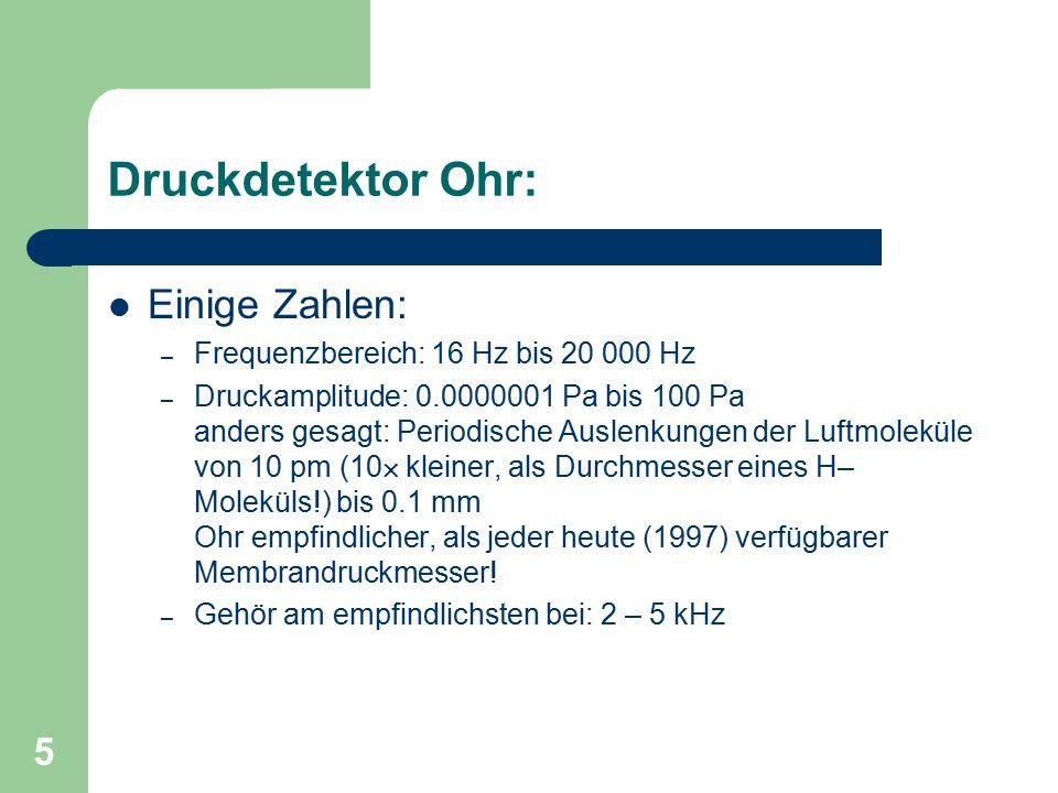 5 Druckdetektor Ohr: Einige Zahlen: – Frequenzbereich: 16 Hz bis 20 000 Hz – Druckamplitude: 0.0000001 Pa bis 100 Pa anders gesagt: Periodische Auslen