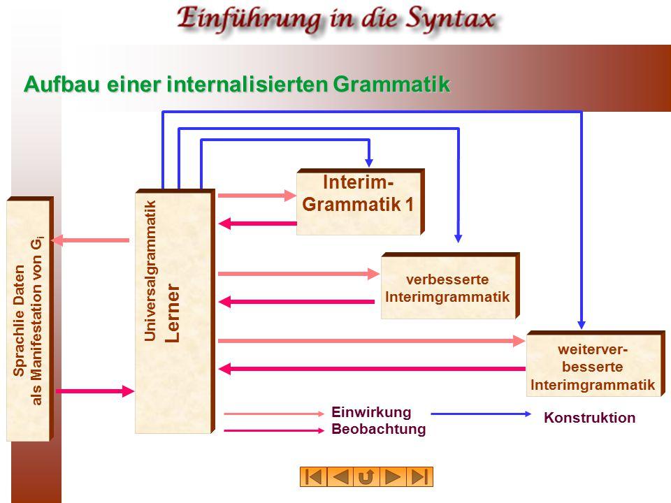 Aufbau einer internalisierten Grammatik Sprachlie Daten als Manifestation von G i Interim- Grammatik 1 verbesserte Interimgrammatik weiterver- bessert