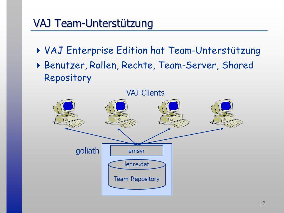 12 VAJ Team-Unterstützung  VAJ Enterprise Edition hat Team-Unterstützung  Benutzer, Rollen, Rechte, Team-Server, Shared Repository goliath emsvr Team Repository lehre.dat VAJ Clients