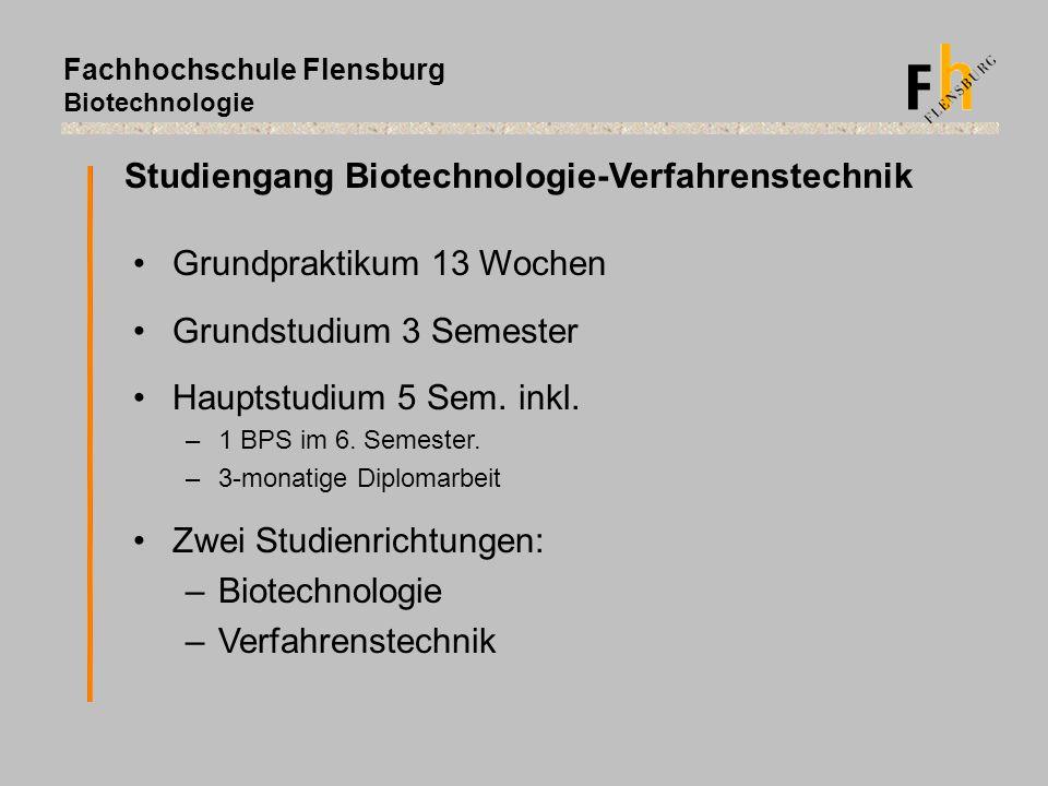 Fachhochschule Flensburg Biotechnologie Studiengang Biotechnologie-Verfahrenstechnik Grundpraktikum 13 Wochen Grundstudium 3 Semester Hauptstudium 5 S