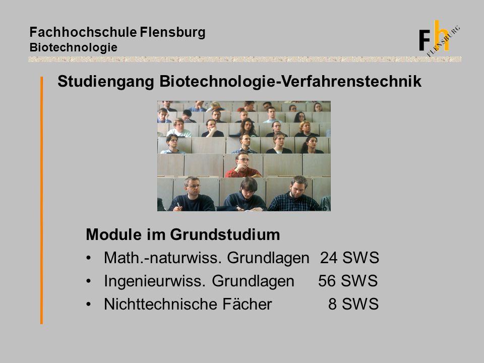 Fachhochschule Flensburg Biotechnologie Studiengang Biotechnologie-Verfahrenstechnik Module im Grundstudium Math.-naturwiss. Grundlagen 24 SWS Ingenie