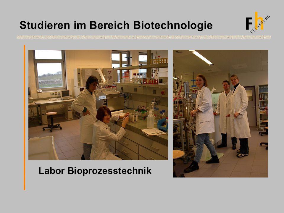 Studieren im Bereich Biotechnologie Labor Bioprozesstechnik