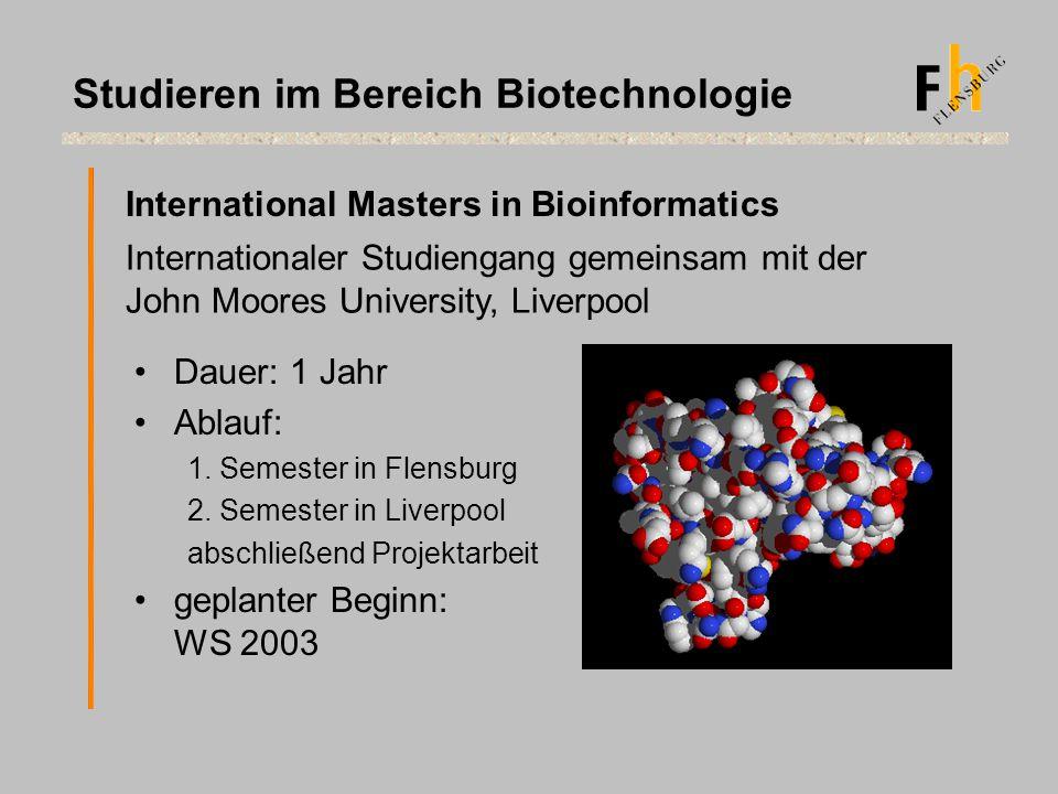 Dauer: 1 Jahr Ablauf: 1. Semester in Flensburg 2. Semester in Liverpool abschließend Projektarbeit geplanter Beginn: WS 2003 International Masters in