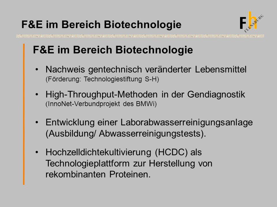 F&E im Bereich Biotechnologie Nachweis gentechnisch veränderter Lebensmittel (Förderung: Technologiestiftung S-H) High-Throughput-Methoden in der Gend