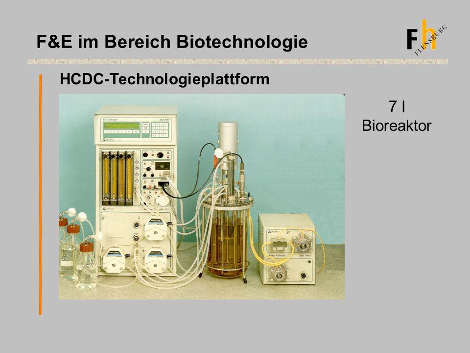 HCDC-Technologieplattform 7 l Bioreaktor F&E im Bereich Biotechnologie