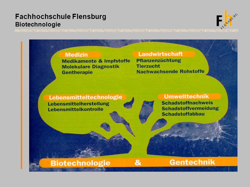 Fachhochschule Flensburg Biotechnologie
