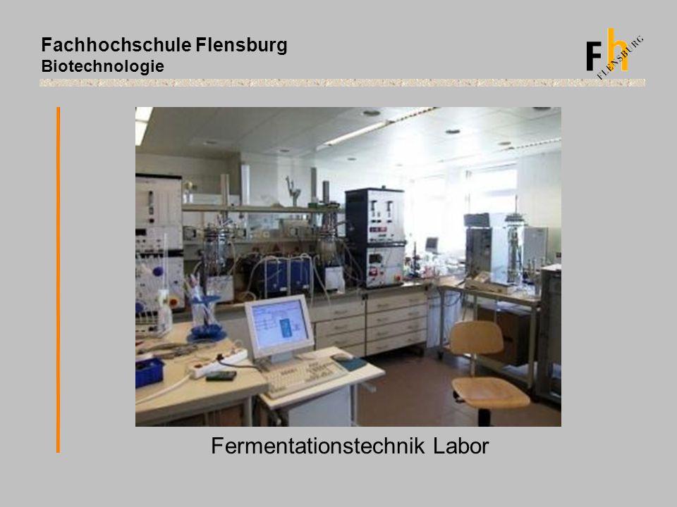 Fachhochschule Flensburg Biotechnologie Fermentationstechnik Labor