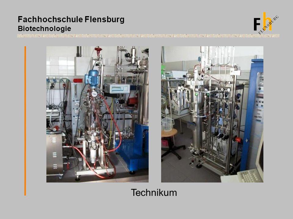 Fachhochschule Flensburg Biotechnologie Technikum