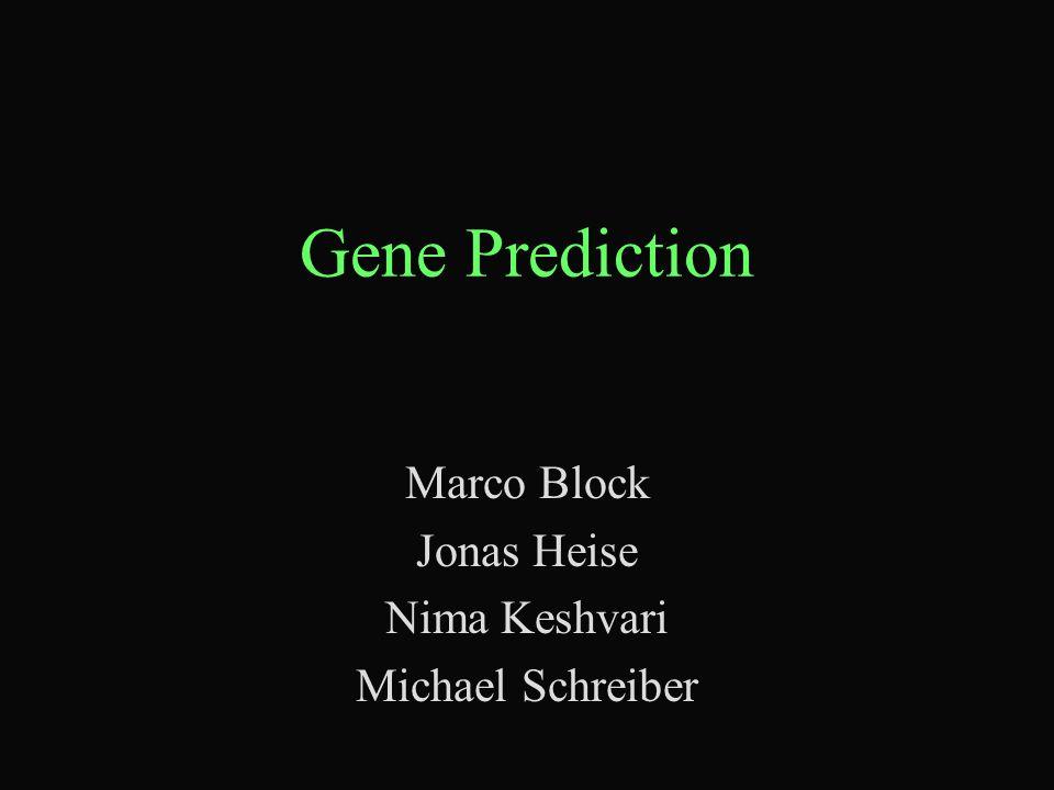 Gene Prediction Marco Block Jonas Heise Nima Keshvari Michael Schreiber