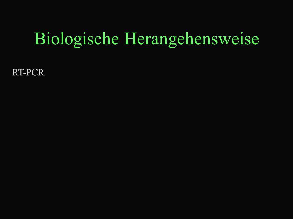 Biologische Herangehensweise RT-PCR