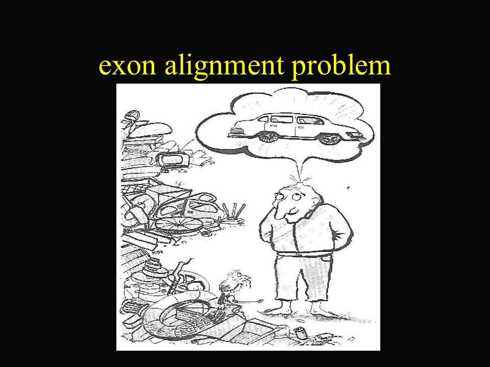 Grundlagen der Biologie Die Exons werden bei der Translation (Produktion eines Proteins aus mRNA) übersetzt, die Introns werden durch Splicing entfernt.