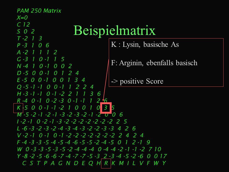 Beispielmatrix K : Lysin, basische As F: Arginin, ebenfalls basisch -> positive Score