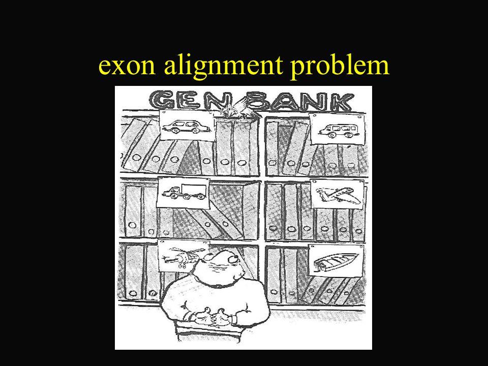 Naiver Ansatz - Suche alle möglichen Exon-Blöcke - Finde durch ausprobieren aller möglichen Kombinationen die bes