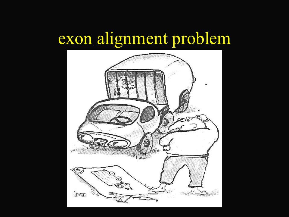 Kombinatorischer Ansatz 7/10 Laufzeit : Wir können, das spliced alignment problem zu dem bereits von Kruskal formulierten network alignment problem transformieren.