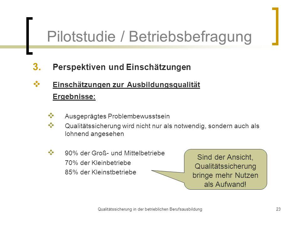 Qualitätssicherung in der betrieblichen Berufsausbildung23 Pilotstudie / Betriebsbefragung 3. Perspektiven und Einschätzungen  Einschätzungen zur Aus