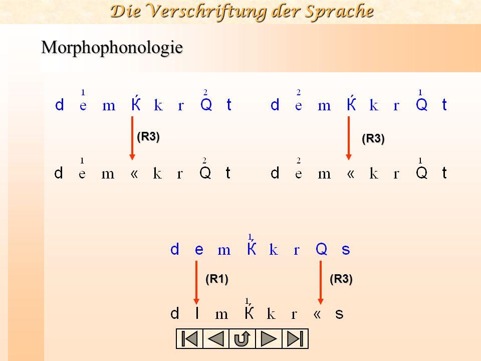 Die Verschriftung der Sprache Morphophonologie (R3) (R3) (R1)(R3)