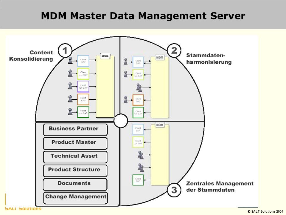  SALT Solutions 2004 MDM Master Data Management Server