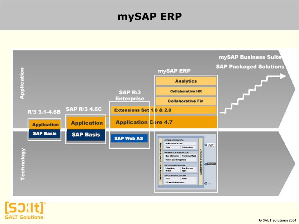  SALT Solutions 2004 mySAP ERP