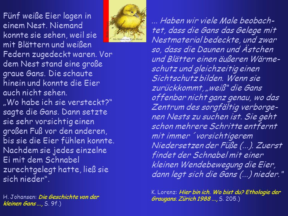 """2.2 Die """"Nachfrageseite : (Mehrfach)Adressierung in der KJL / Interessen und Präferenzen der Heranwachsenden Clip aus: Die unendliche Geschichte, BRD 1984, Regie Wolfgang Petersen"""