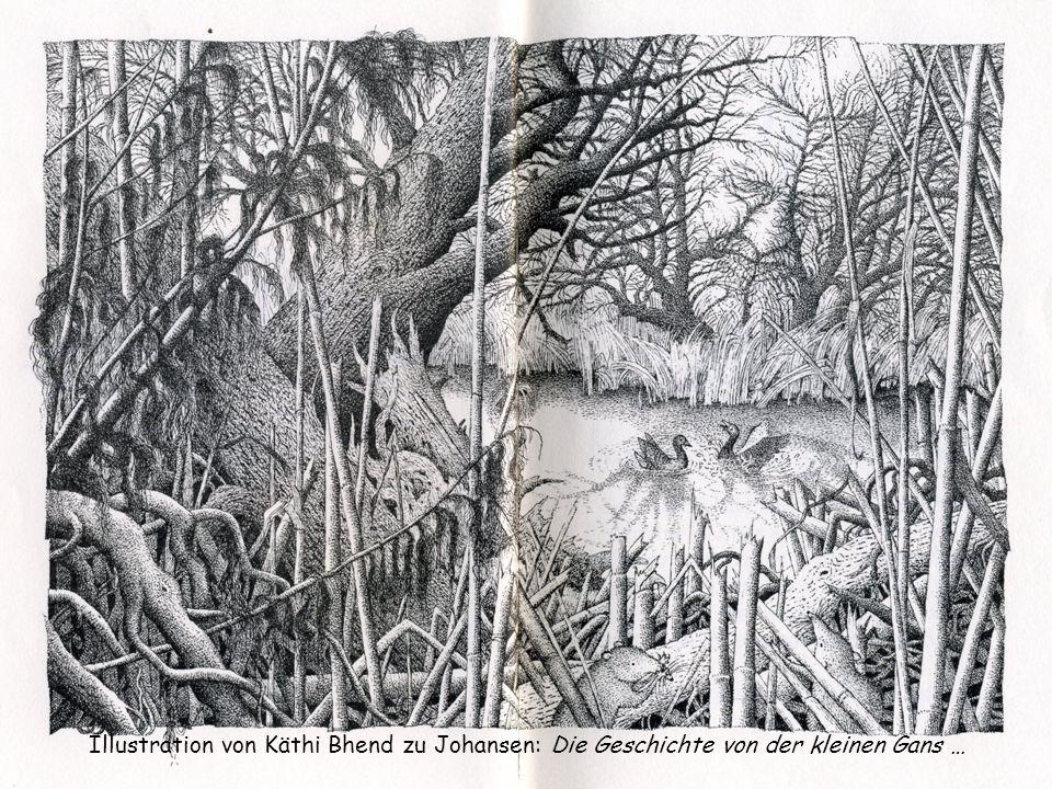 Illustration von Käthi Bhend zu Johansen: Die Geschichte von der kleinen Gans …