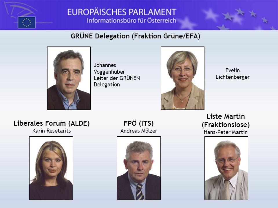 GRÜNE Delegation (Fraktion Grüne/EFA) Johannes Voggenhuber Leiter der GRÜNEN Delegation Evelin Lichtenberger Liste Martin (Fraktionslose) Hans-Peter M
