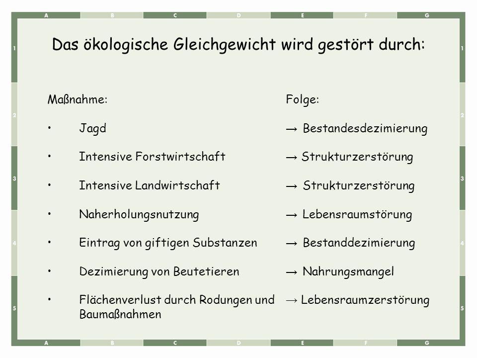 Maßnahme:Folge: Jagd → Bestandesdezimierung Intensive Forstwirtschaft → Strukturzerstörung Intensive Landwirtschaft → Strukturzerstörung Naherholungsn