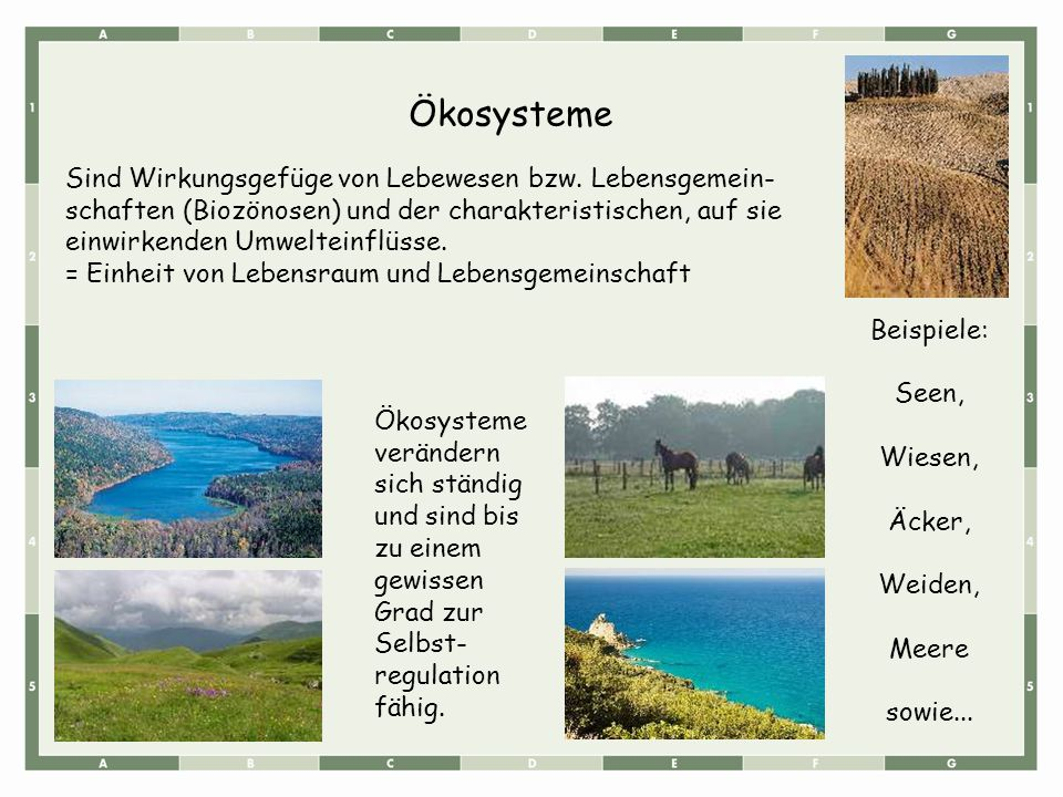 Ökosysteme Sind Wirkungsgefüge von Lebewesen bzw. Lebensgemein- schaften (Biozönosen) und der charakteristischen, auf sie einwirkenden Umwelteinflüsse