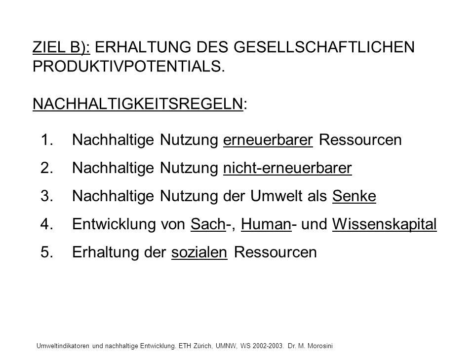 Umweltindikatoren und nachhaltige Entwicklung. ETH Zürich, UMNW, WS 2002-2003. Dr. M. Morosini ZIEL B): ERHALTUNG DES GESELLSCHAFTLICHEN PRODUKTIVPOTE
