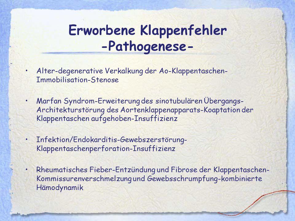 Erworbene Klappenfehler -Pathogenese- Alter-degenerative Verkalkung der Ao-Klappentaschen- Immobilisation-Stenose Marfan Syndrom-Erweiterung des sinot