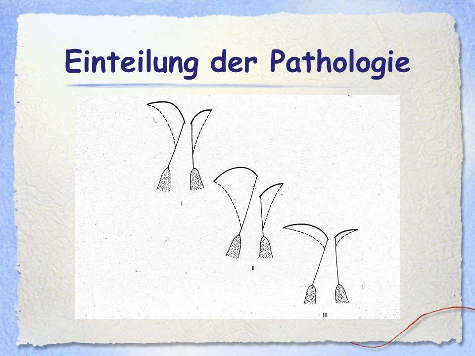 Einteilung der Pathologie