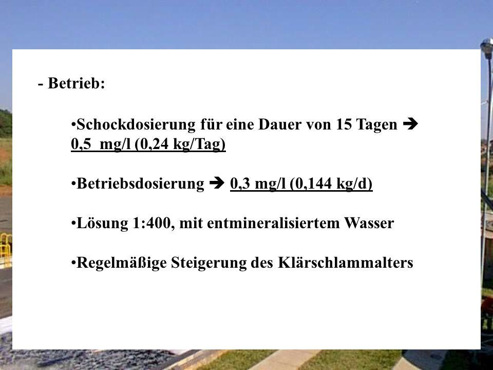 Erfahrung 2 Fibralin Têxtil (Itatiba - SP) - Aufnahme der Tests im Juli 98, Anlageneigenschaften: - Wichtigste Zielsetzungen: Steigerung der Mikrobenpopulation (Ausflockung) Steigerung der Effizienz bei der BSB/CSB-Beseitigung Verringerung der Anzahl der Filamentbakterien Geringere Schlammerzeugung (IL-Level auf 20 Tage verläng.) Verringerung der Färbung Flussrate (Q): 15 m 3 /h BSB2: 1800 mg/l CSB2: 3000 mg/l (Ef of 85 %) IL: 14 Tage SST3: 3100 ml/l Klärschlammerzeugung: 675 kg/Tag (Basis Trockengewicht)