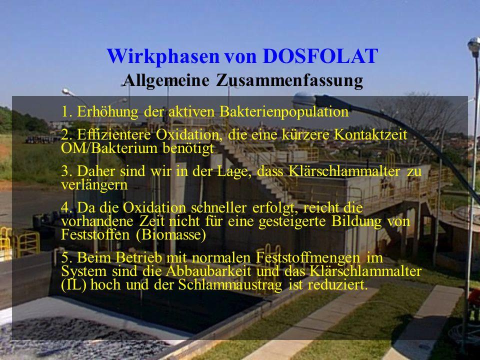 Wirkphasen von DOSFOLAT Allgemeine Zusammenfassung 1.