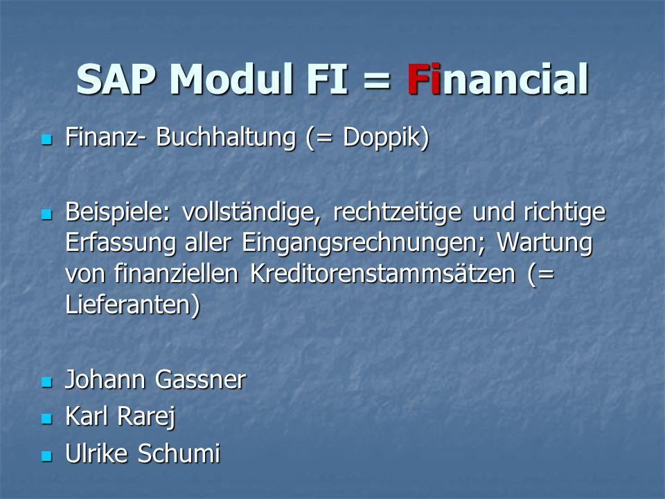 SAP Modul FI = Financial Finanz- Buchhaltung (= Doppik) Finanz- Buchhaltung (= Doppik) Beispiele: vollständige, rechtzeitige und richtige Erfassung al