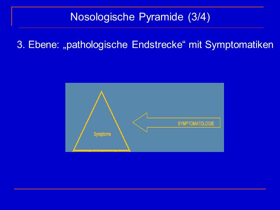 "Nosologische Pyramide (3/4) 3. Ebene: ""pathologische Endstrecke"" mit Symptomatiken"
