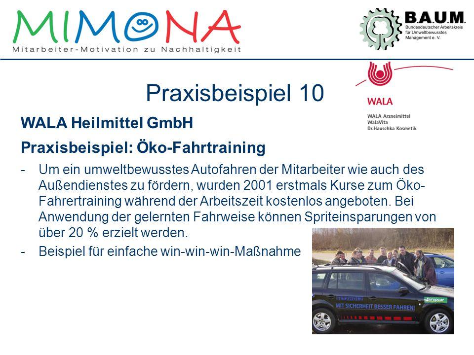 Praxisbeispiel 10 WALA Heilmittel GmbH Praxisbeispiel: Öko-Fahrtraining -Um ein umweltbewusstes Autofahren der Mitarbeiter wie auch des Außendienstes