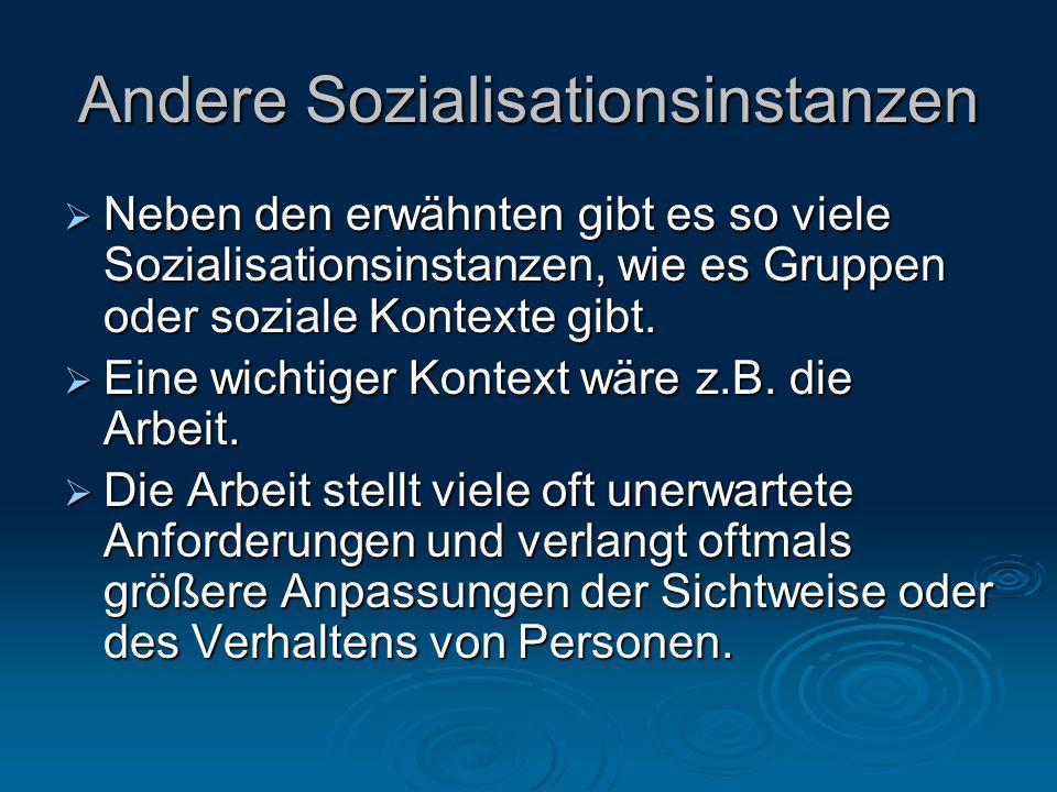 Andere Sozialisationsinstanzen  Neben den erwähnten gibt es so viele Sozialisationsinstanzen, wie es Gruppen oder soziale Kontexte gibt.  Eine wicht