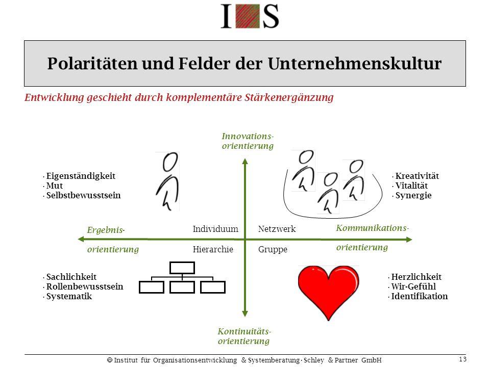  Institut für Organisationsentwicklung & SystemberatungSchley & Partner GmbH 13 Eigenständigkeit Mut Selbstbewusstsein Kreativität Vitalität Synergie