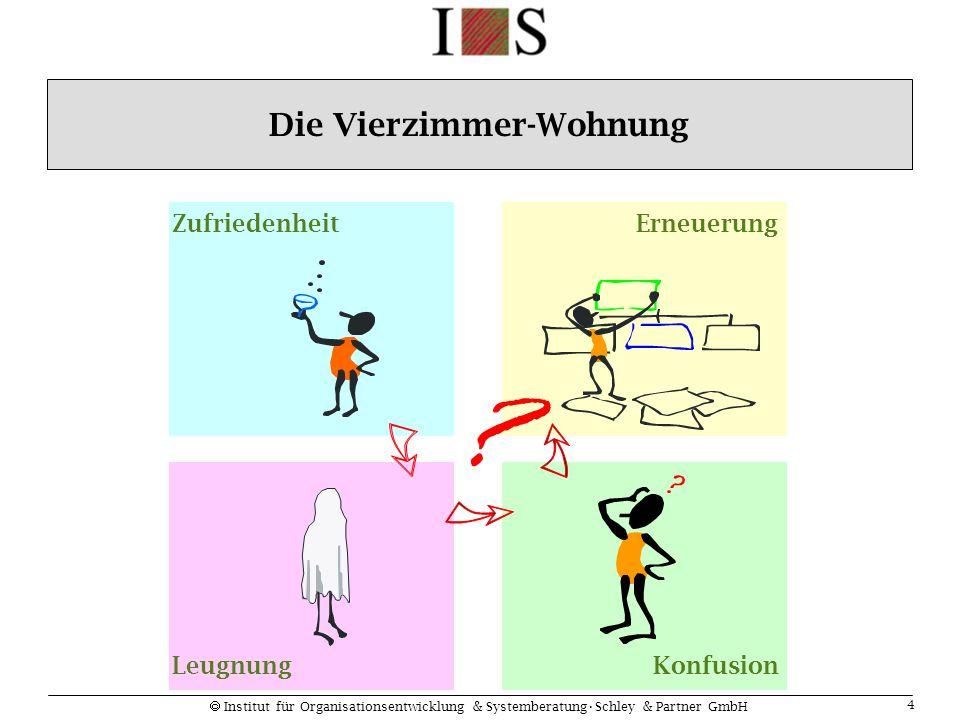  Institut für Organisationsentwicklung & SystemberatungSchley & Partner GmbH 5 Stabilität kreative StörungNeugestaltung Prozess- Muster- Wechsel Stabilität kritische Instabilität Change Management als Phasenübergang