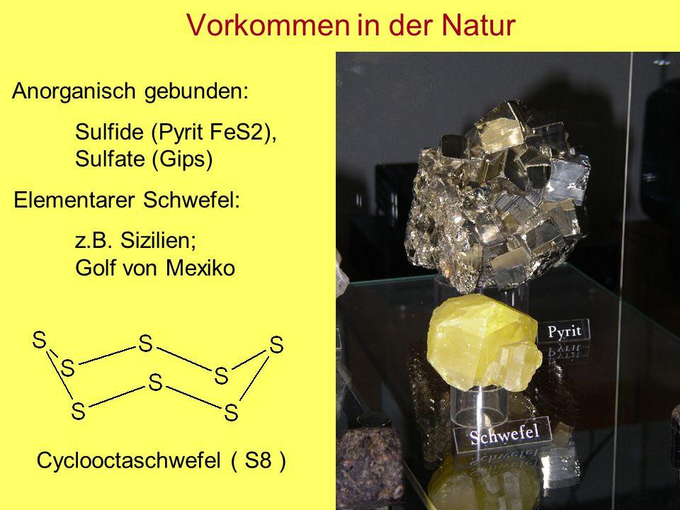 Vorkommen in der Natur Anorganisch gebunden: Sulfide (Pyrit FeS2), Sulfate (Gips) Elementarer Schwefel: z.B. Sizilien; Golf von Mexiko Cyclooctaschwef