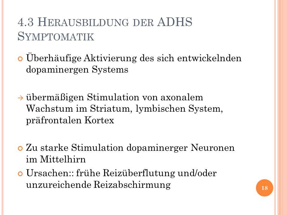 4.3 H ERAUSBILDUNG DER ADHS S YMPTOMATIK Überhäufige Aktivierung des sich entwickelnden dopaminergen Systems  übermäßigen Stimulation von axonalem Wa