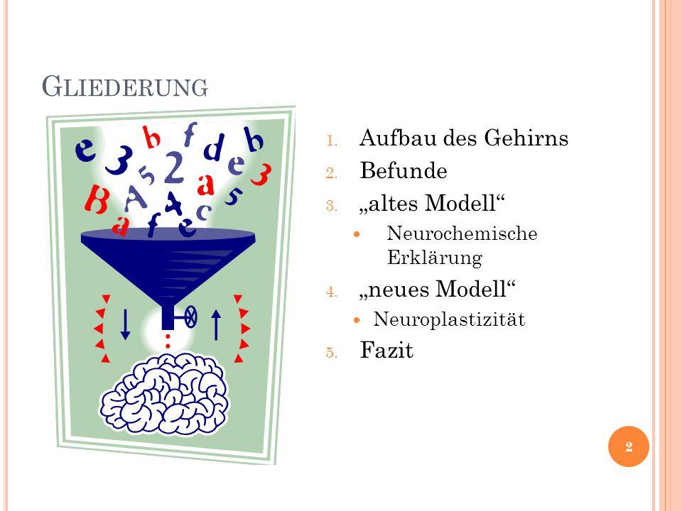 """G LIEDERUNG 1. Aufbau des Gehirns 2. Befunde 3. """"altes Modell"""" Neurochemische Erklärung 4. """"neues Modell"""" Neuroplastizität 5. Fazit 2"""