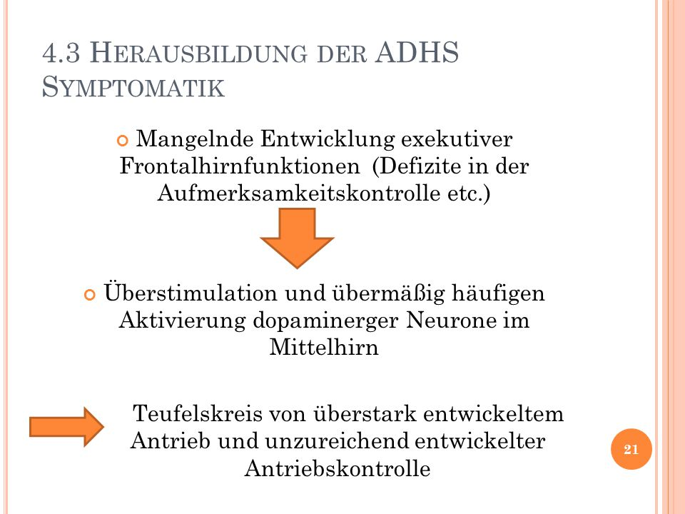 4.3 H ERAUSBILDUNG DER ADHS S YMPTOMATIK Mangelnde Entwicklung exekutiver Frontalhirnfunktionen (Defizite in der Aufmerksamkeitskontrolle etc.) Überst