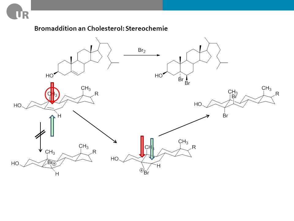 Bromaddition an Cholesterol: Stereochemie